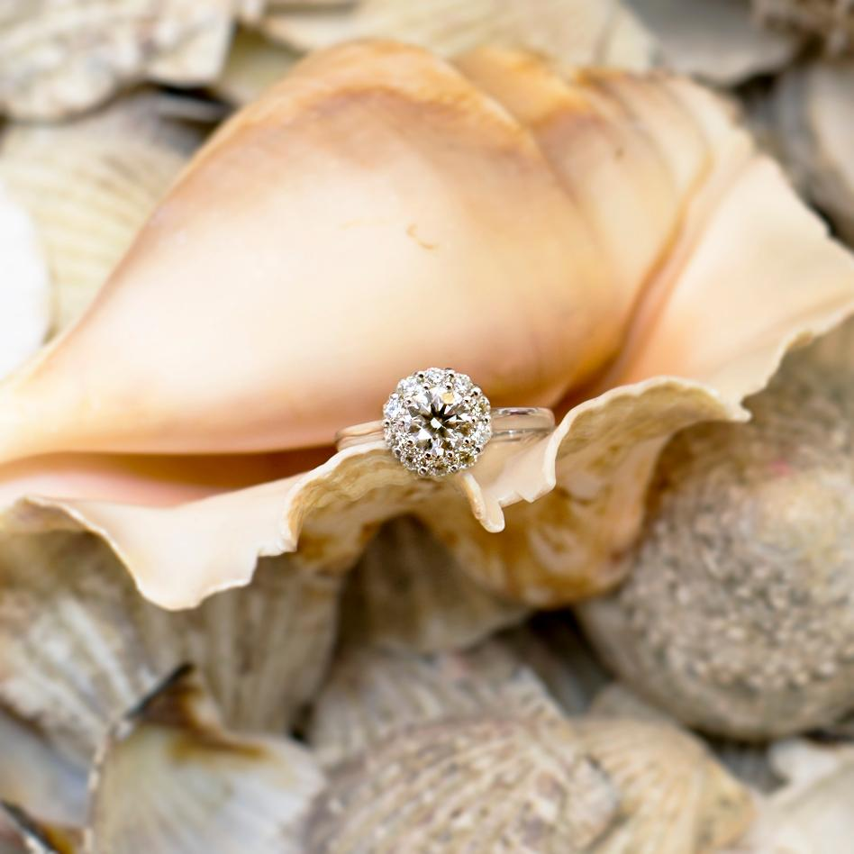 A diamond gift concealed in a shell.